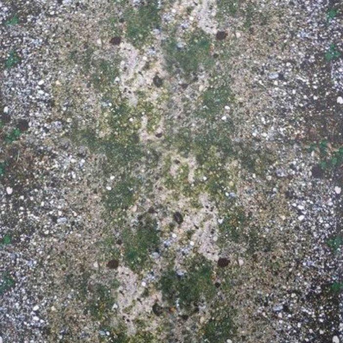 'Ground' Print