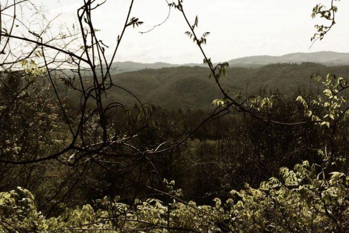 'Umbrian Landscape' Clutch
